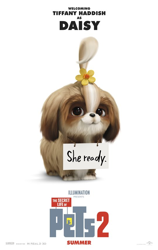The Secret Life of Pets 2 Poster Large