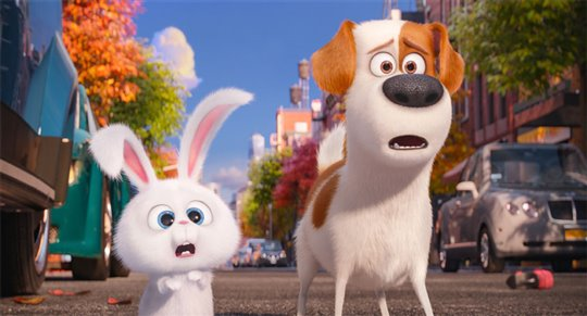 The Secret Life of Pets Poster Large