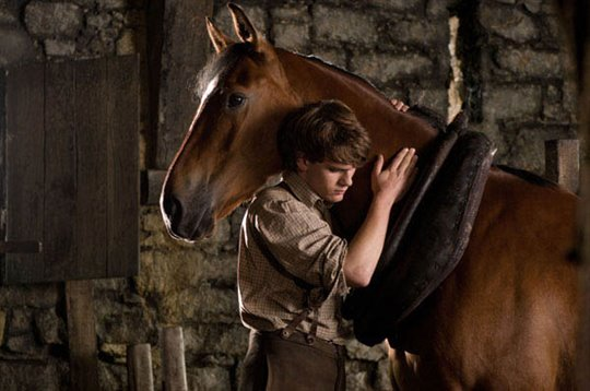 War Horse Photo 8 - Large