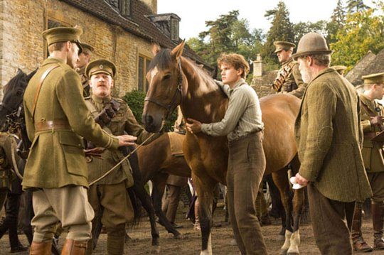 War Horse Photo 12 - Large