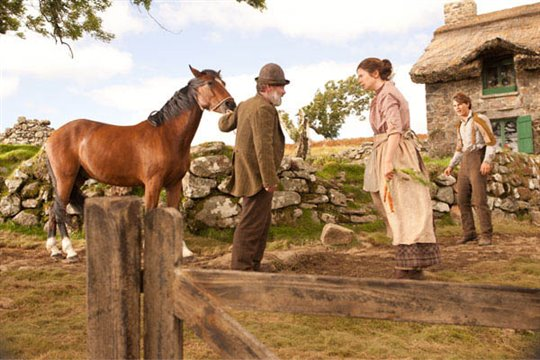 War Horse Photo 14 - Large