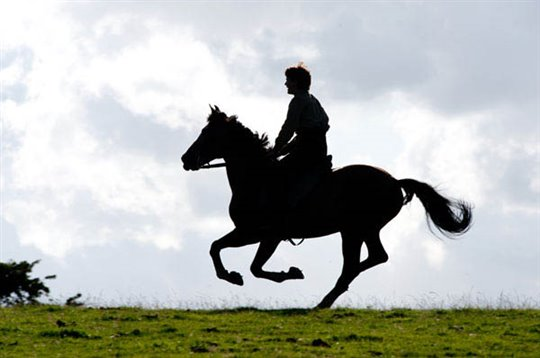 War Horse Photo 16 - Large