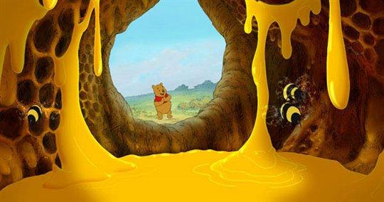 Winnie the Pooh Photo 13 - Large