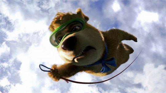 Yogi Bear Photo 25 - Large