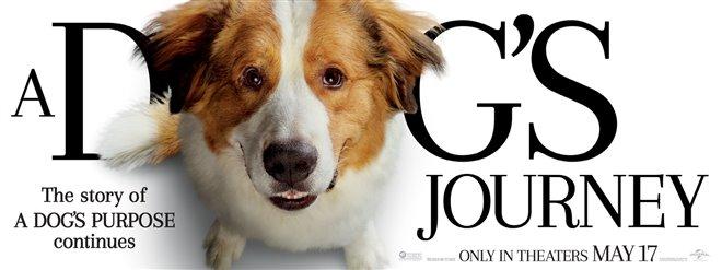 A Dog's Journey Photo 2 - Large
