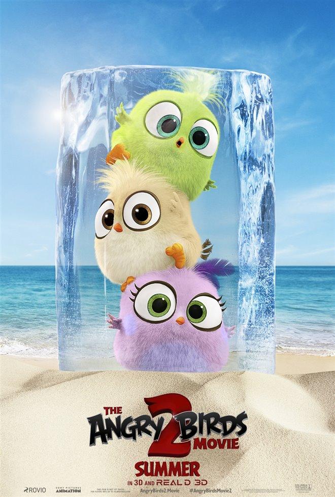 Angry Birds : Le film 2 Photo 38 - Grande