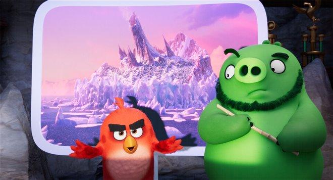 Angry Birds : Le film 2 Photo 1 - Grande