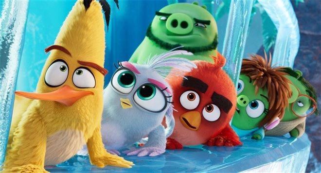 Angry Birds : Le film 2 Photo 9 - Grande