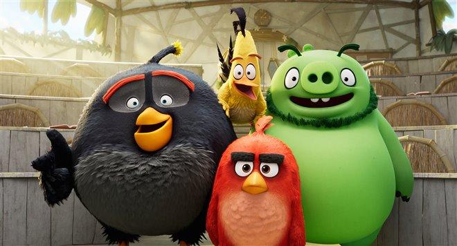 Angry Birds : Le film 2 Photo 17 - Grande