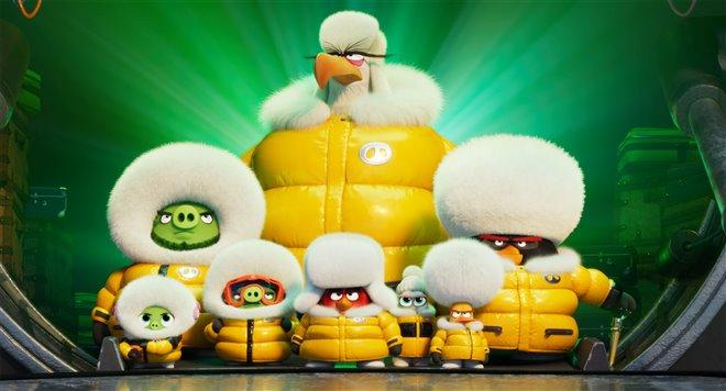 Angry Birds : Le film 2 Photo 29 - Grande