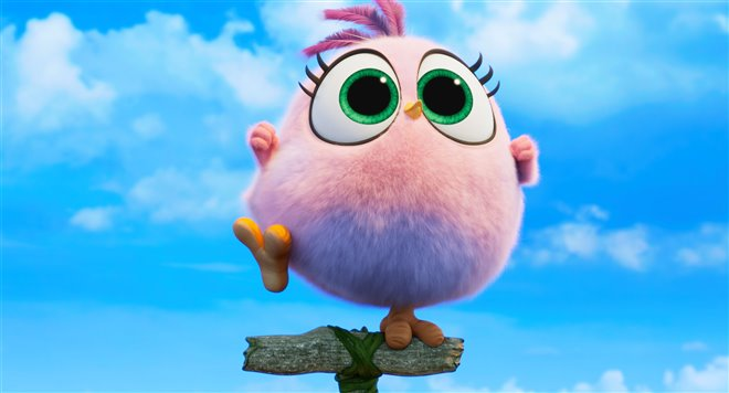 Angry Birds : Le film 2 Photo 33 - Grande