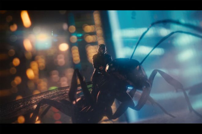 Ant-Man Photo 15 - Large
