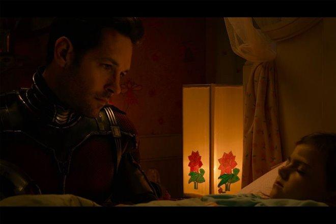 Ant-Man Photo 31 - Large