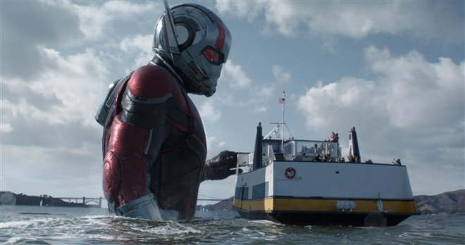 Ant-Man and The Wasp Photo 11 - Large