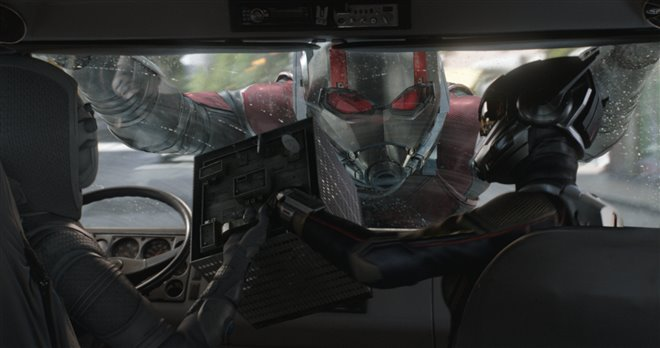 Ant-Man and The Wasp Photo 21 - Large