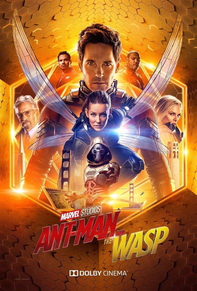 Ant-Man and The Wasp Photo 45 - Large