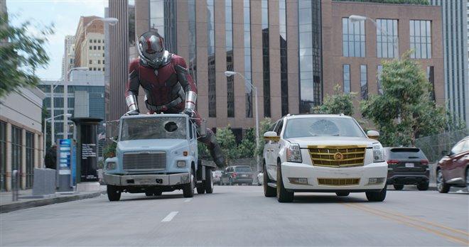 Ant-Man et la Guêpe Photo 13 - Grande