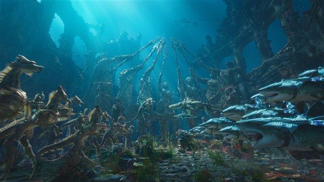 Aquaman (v.f.) Photo 41 - Grande