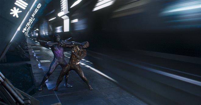 Black Panther Photo 31 - Large