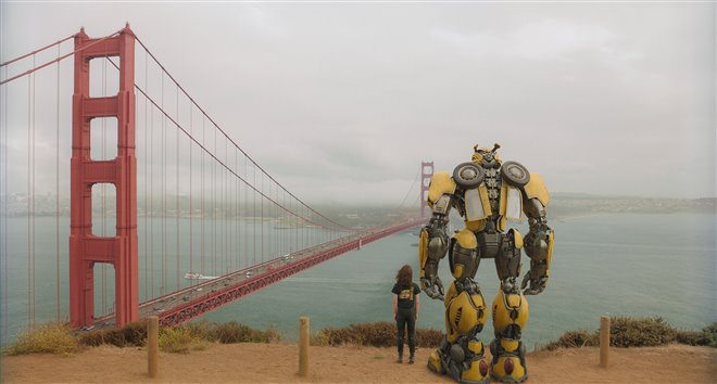 Bumblebee (v.f.) Photo 13 - Grande