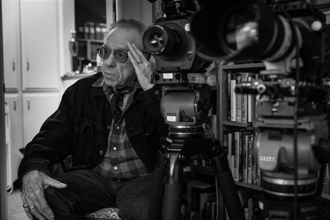 Buster Keaton : Une célébration Photo 5 - Grande