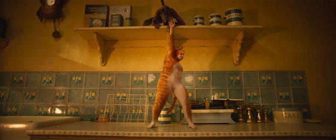 Cats (v.f.) Photo 13 - Grande