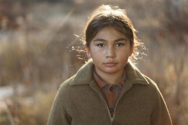 Cheval indien Photo 8 - Grande