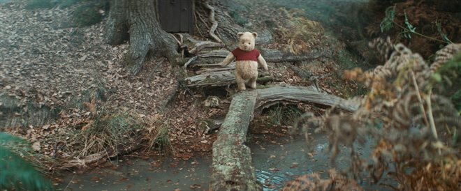 Christopher Robin Photo 5 - Large