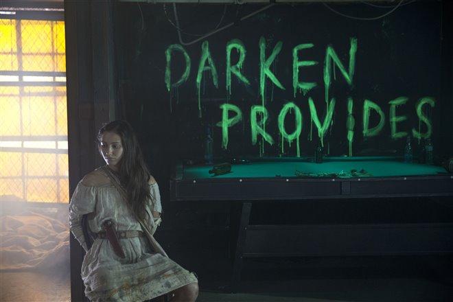 Darken Photo 3 - Large