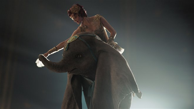 Dumbo Photo 13 - Large