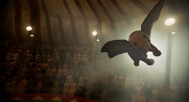 Dumbo Photo 19 - Large