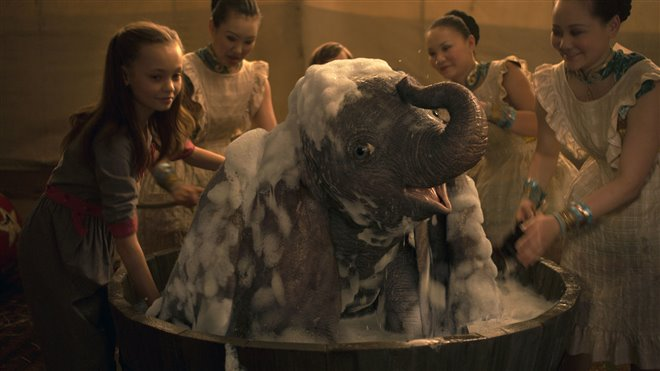 Dumbo (v.f.) Photo 21 - Grande