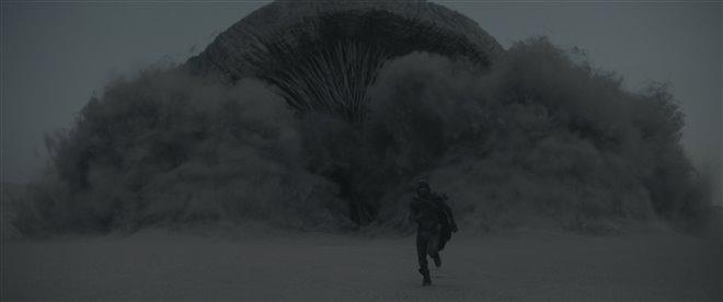 Dune Photo 20 - Large