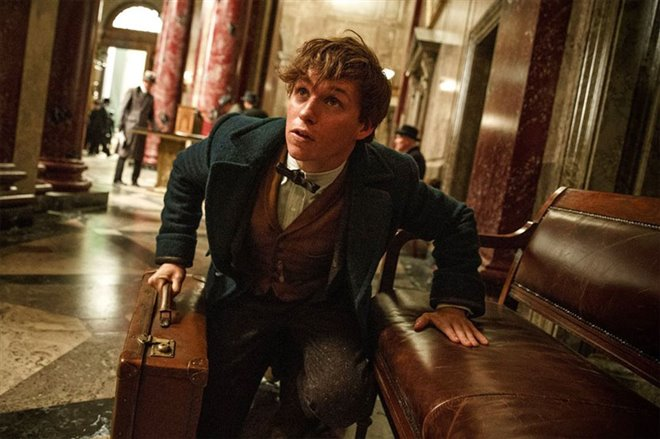 Fantastic Beasts and Where to Find Them Photo 2 - Large