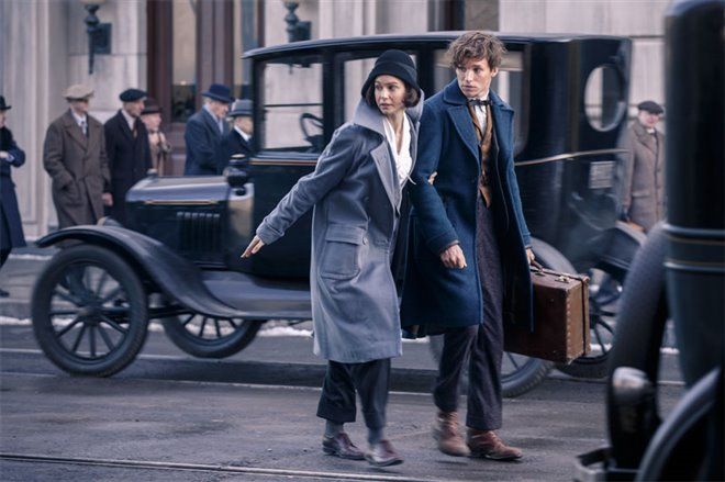 Fantastic Beasts and Where to Find Them Photo 24 - Large