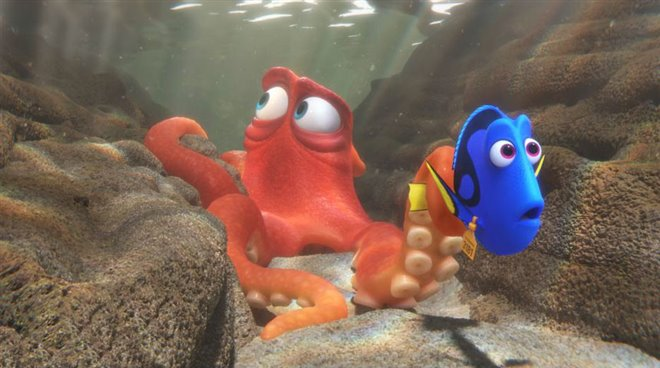 Finding Dory Photo 18 - Large