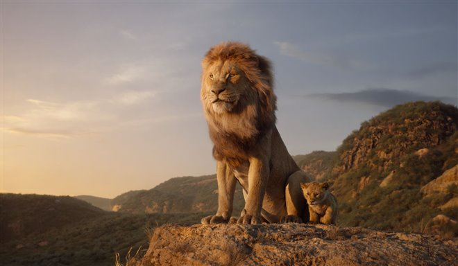 Le roi lion Photo 4 - Grande