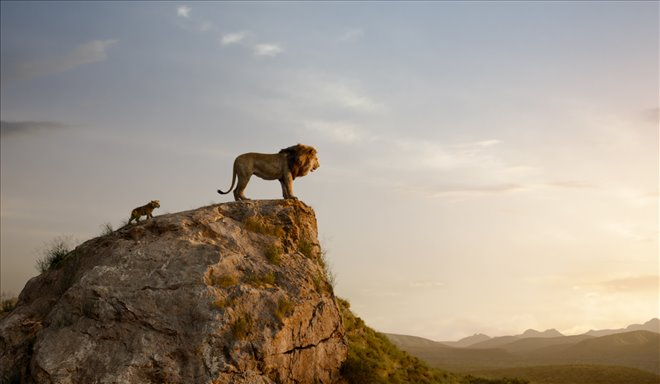 Le roi lion Photo 15 - Grande