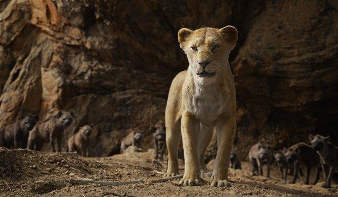 Le roi lion Photo 20 - Grande