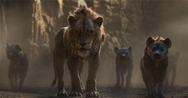 Le roi lion Photo 22 - Grande