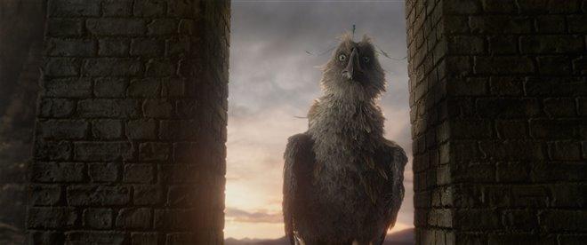 Les animaux fantastiques : Les crimes de Grindelwald Photo 62 - Grande