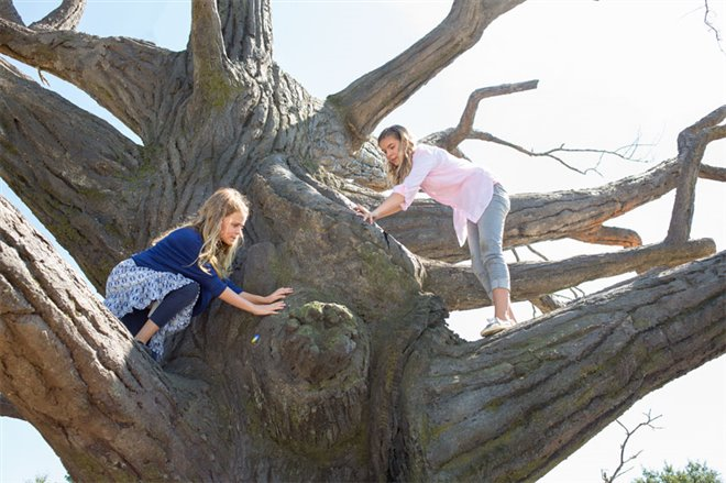 Miracles From Heaven Photo 15 - Large