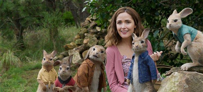 Peter Rabbit Photo 3 - Large