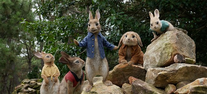 Peter Rabbit Photo 21 - Large