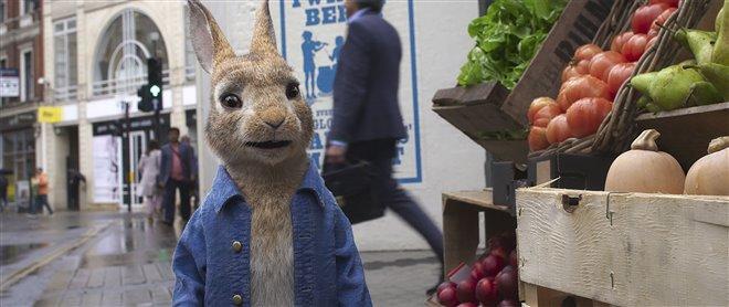 Peter Rabbit 2: The Runaway Photo 1 - Large