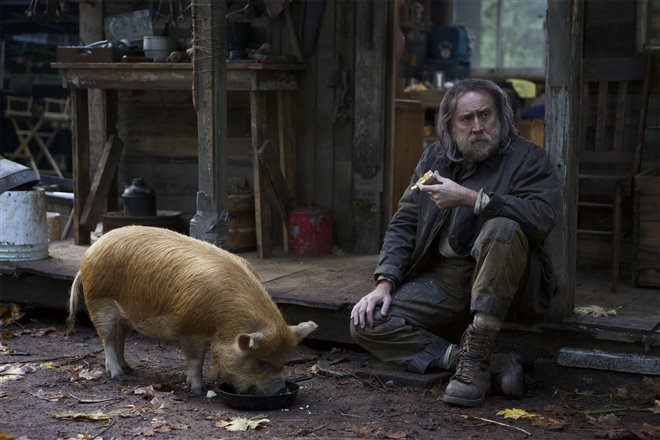 Pig Photo 2 - Large
