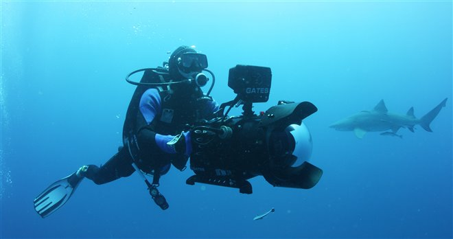 Sharkwater Extinction - Le film Photo 1 - Grande