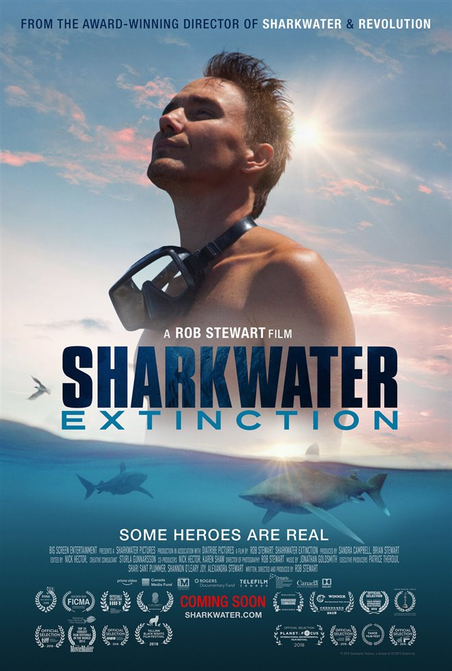 Sharkwater Extinction - Le film Photo 30 - Grande