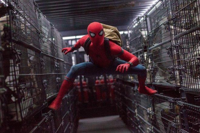 Spider-Man : Les retrouvailles Photo 19 - Grande
