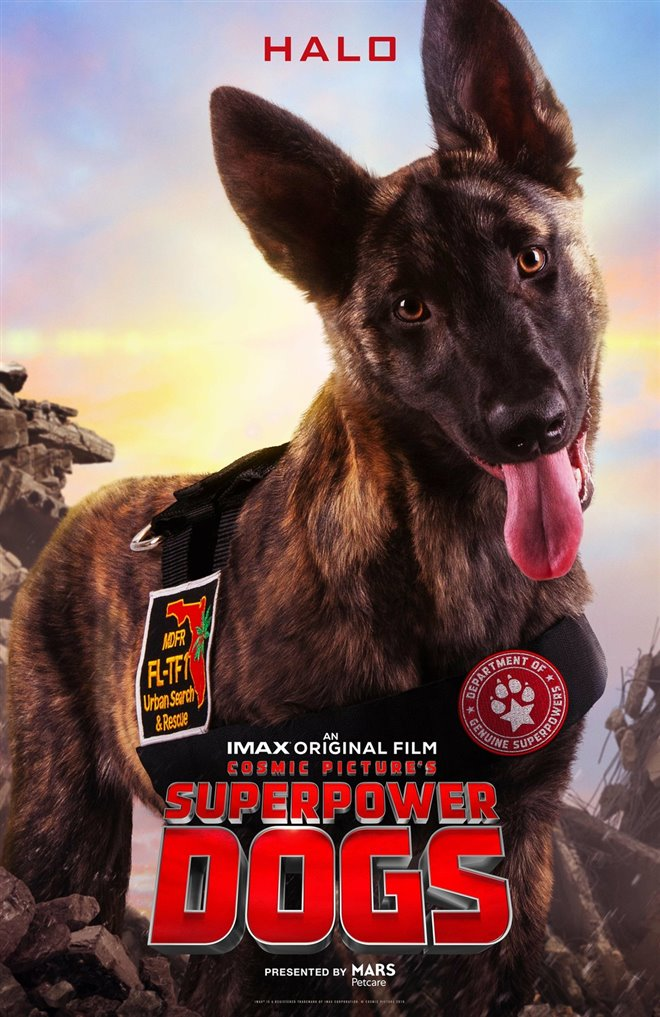 Superpower Dogs Photo 7 - Large